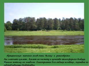Лес смягчает климат , влияет на чистоту и качество атмосферного воздуха. Име