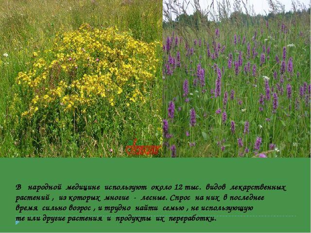В народной медицине используют около 12 тыс. видов лекарственных растений , и...