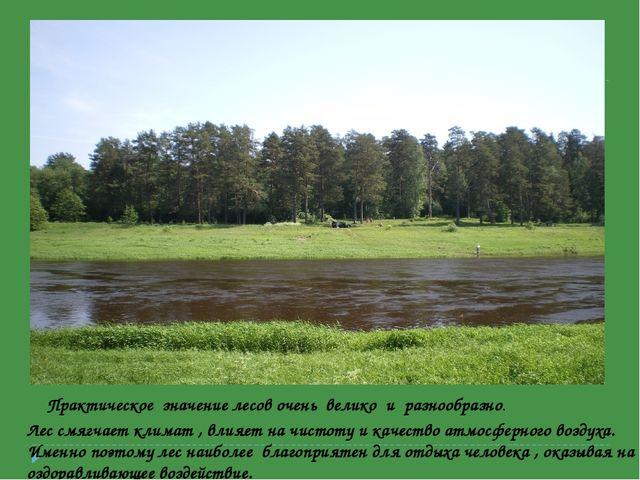 Лес смягчает климат , влияет на чистоту и качество атмосферного воздуха. Име...