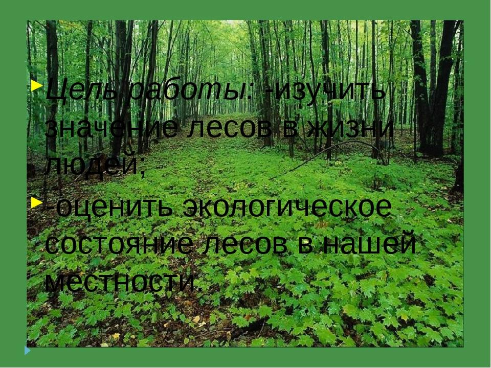 Цель работы: -изучить значение лесов в жизни людей; -оценить экологическое с...