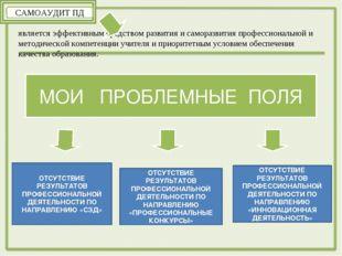 является эффективным средством развития и саморазвития профессиональной и мет