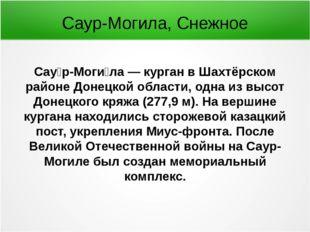 Сау́р-Моги́ла — курган в Шахтёрском районе Донецкой области, одна из высот До