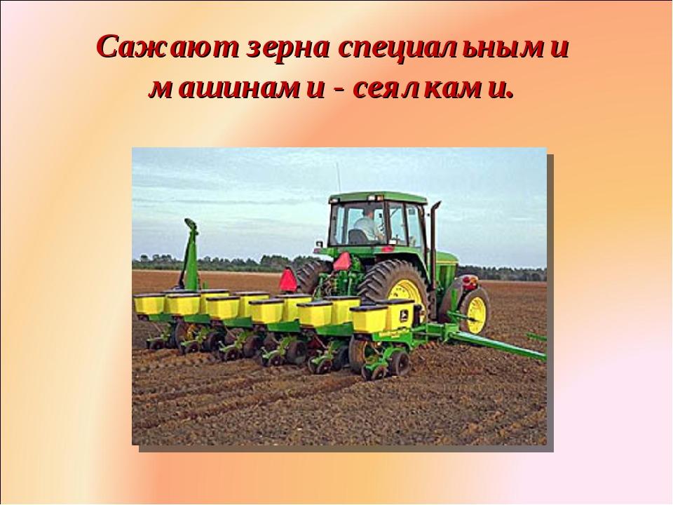 картинка трактор сеет пшеницу раскола банды фотомодель