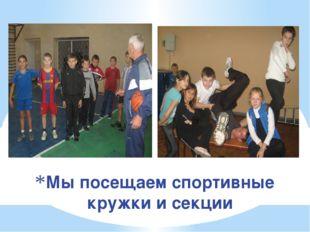 Мы посещаем спортивные кружки и секции