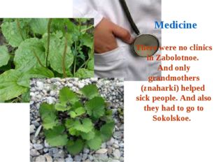 There were no clinics in Zabolotnoe. And only grandmothers (znaharki) helped