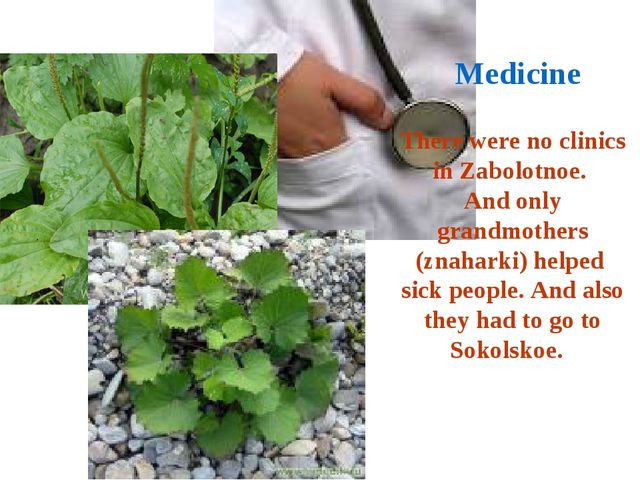 There were no clinics in Zabolotnoe. And only grandmothers (znaharki) helped...