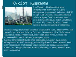 Күкірт қышқылы өндірісі ҚазАқпарат - Жамбыл облысында Индустриалық-инновация