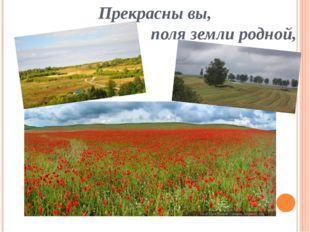 Прекрасны вы, поля земли родной,