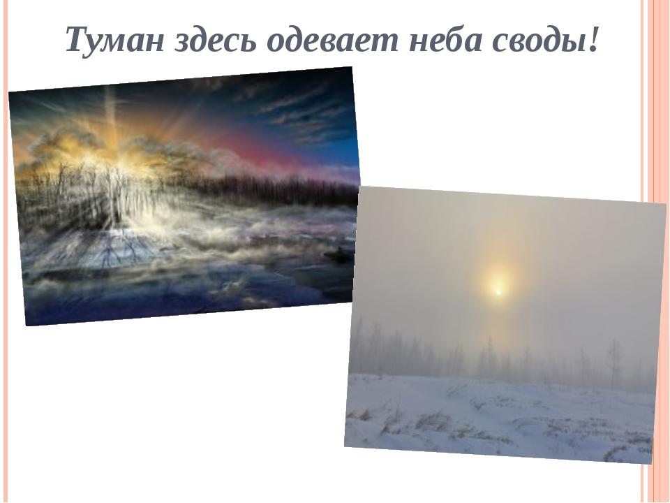 Туман здесь одевает неба своды!