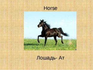 Horse Лошадь- Ат