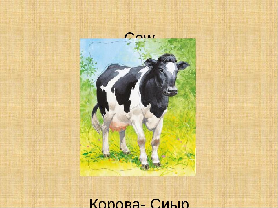Cow Корова- Сиыр