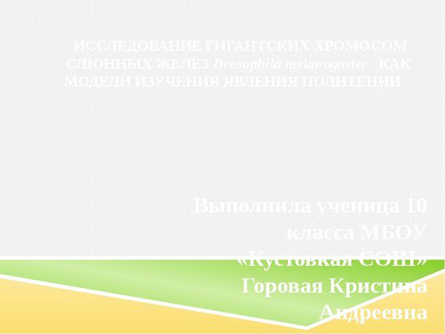 ИССЛЕДОВАНИЕ ГИГАНТСКИХ ХРОМОСОМ СЛЮННЫХ ЖЕЛЁЗ Drosophila melanogaster КАК М...