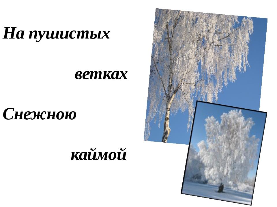 На пушистых ветках Снежною каймой