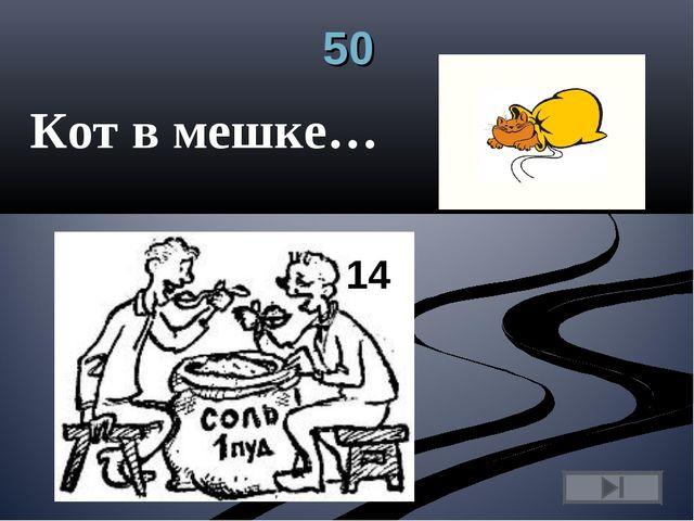 50 Кот в мешке…