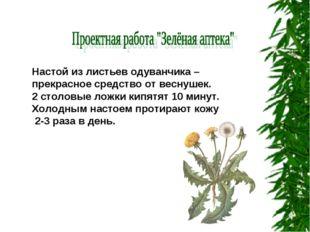 Настой из листьев одуванчика – прекрасное средство от веснушек. 2 столовые ло