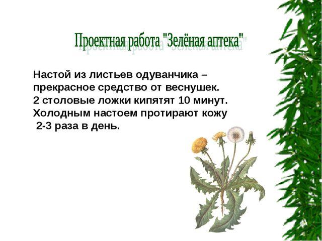 Настой из листьев одуванчика – прекрасное средство от веснушек. 2 столовые ло...