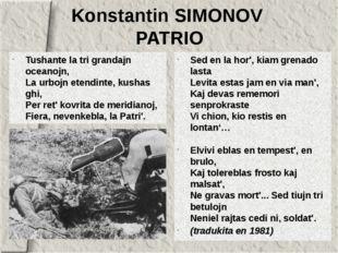 Konstantin SIMONOV PATRIO Tushante la tri grandajn oceanojn, La urbojn etendi