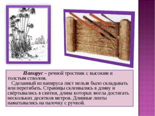 Папирус – речной тростник с высоким и толстым стволом. Сделанный из папир