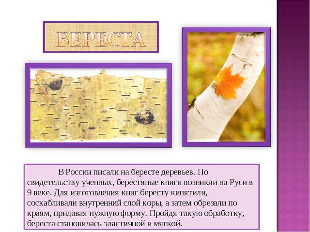 В России писали на бересте деревьев. По свидетельству ученных, берестяные кн...