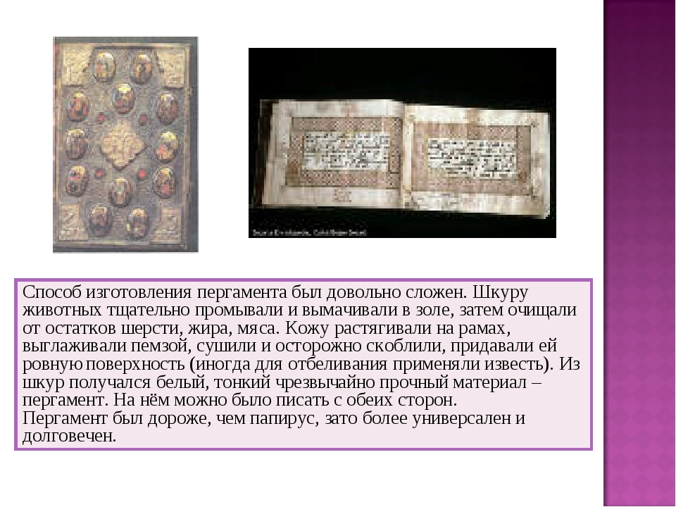 Способ изготовления пергамента был довольно сложен. Шкуру животных тщательно...