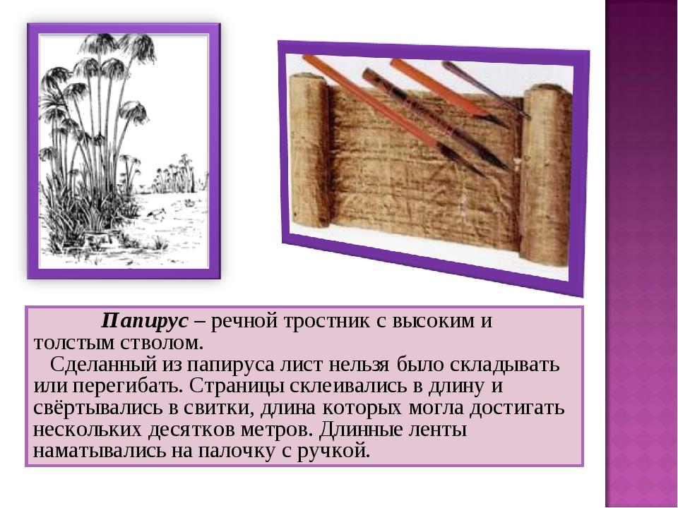 Папирус – речной тростник с высоким и толстым стволом. Сделанный из папир...