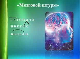 «Мозговой штурм» З А Т О П И Л А Ц В Е Т И К  В Е С Е Л О