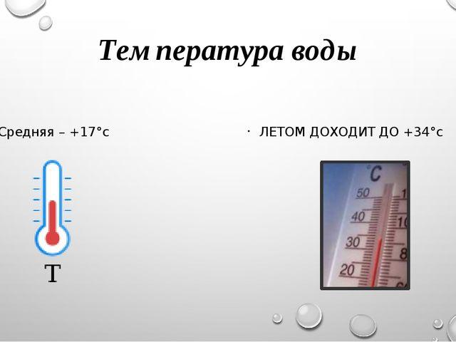 Температура воды Средняя – +17°с ЛЕТОМ ДОХОДИТ ДО +34°с