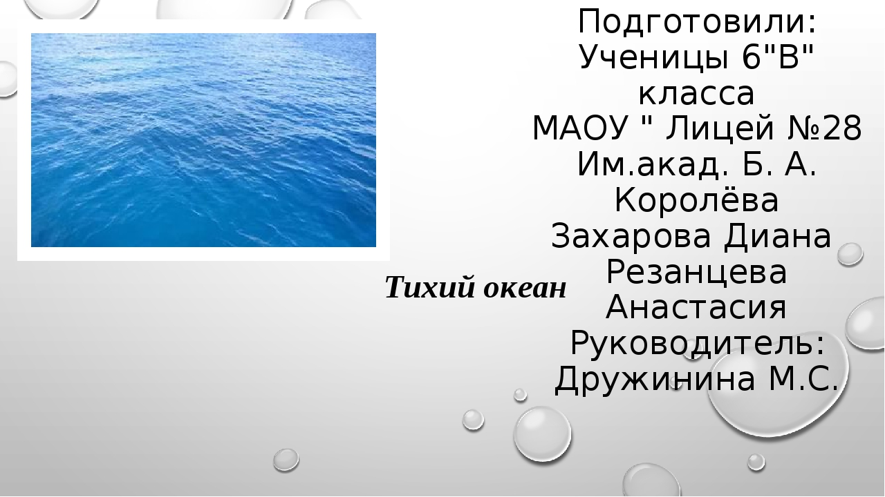 """Подготовили: Ученицы 6""""В"""" класса МАОУ """" Лицей №28 Им.акад. Б. А. Королёва Зах..."""