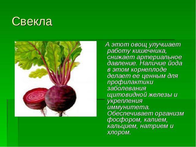 Свекла А этот овощ улучшает работу кишечника, снижает артериальное давление....