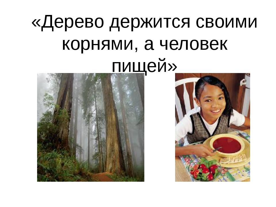 «Дерево держится своими корнями, а человек пищей»