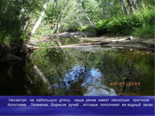 Несмотря на небольшую длину, наша речка имеет несколько притоков Колотовка ,