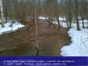 В реке летом воды становится мало , а весной она разливается . И шумит , шуми