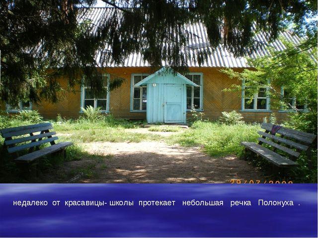 недалеко от красавицы- школы протекает небольшая речка Полонуха .