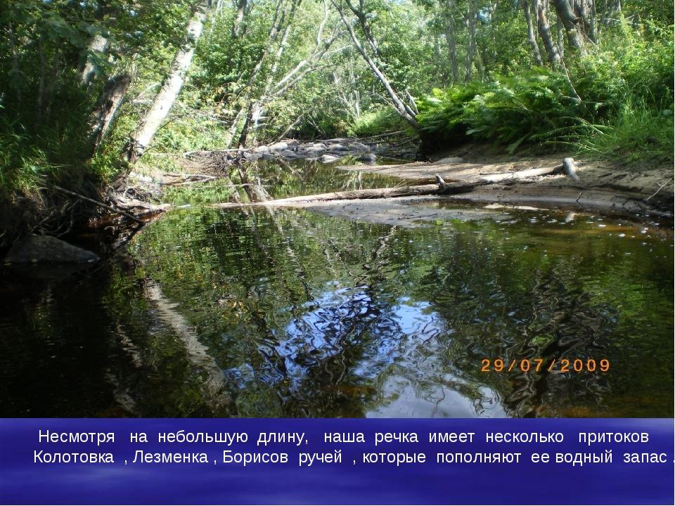 Несмотря на небольшую длину, наша речка имеет несколько притоков Колотовка ,...