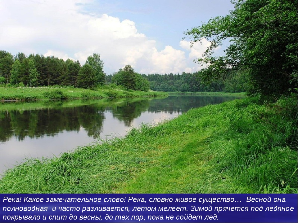 волга Река! Какое замечательное слово! Река, словно живое существо… Весной он...