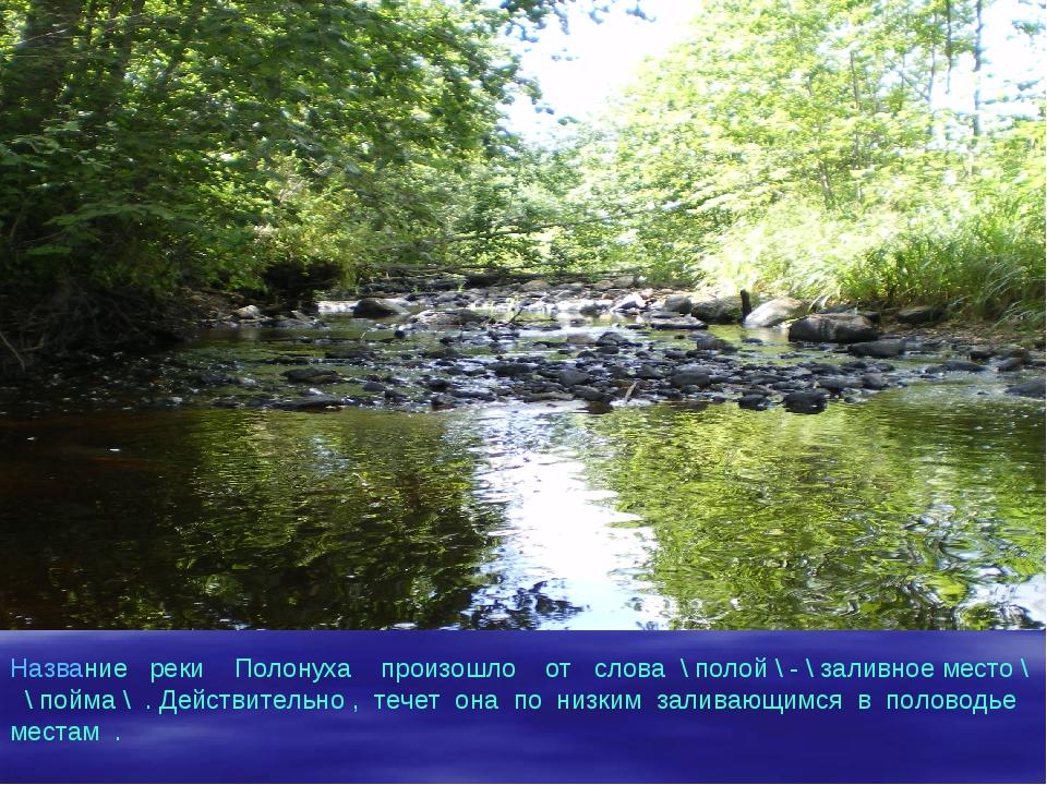 Название реки Полонуха произошло от слова \ полой \ - \ заливное место \ \ по...