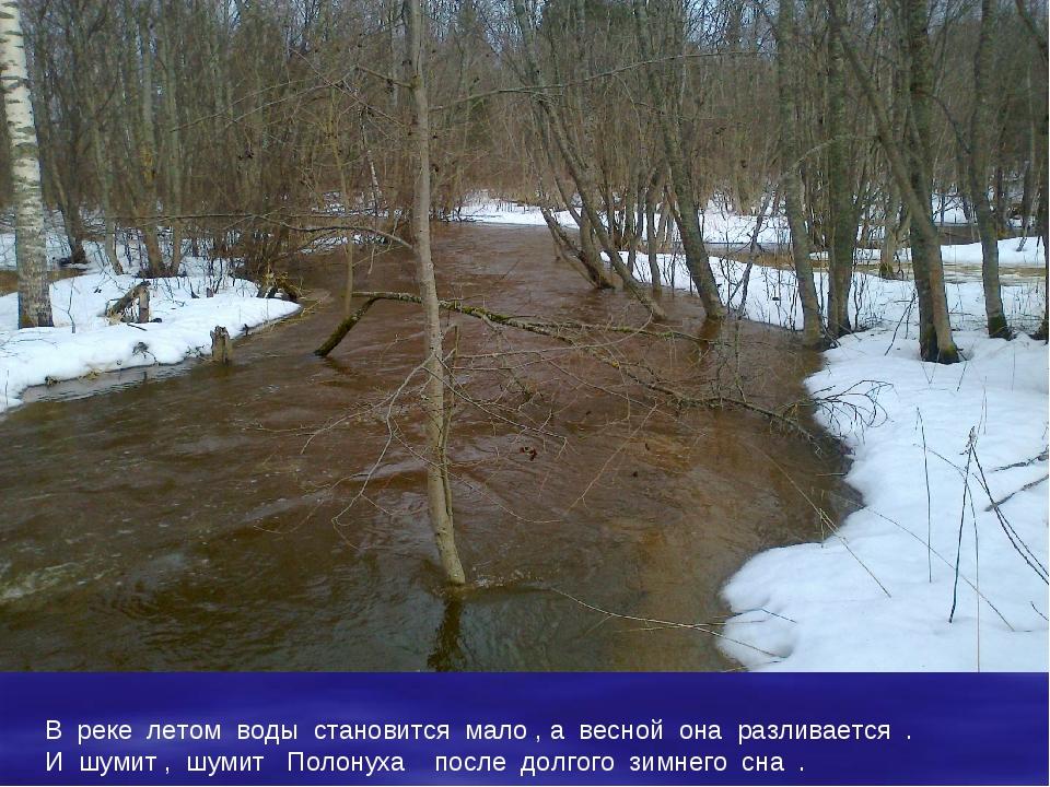 В реке летом воды становится мало , а весной она разливается . И шумит , шуми...