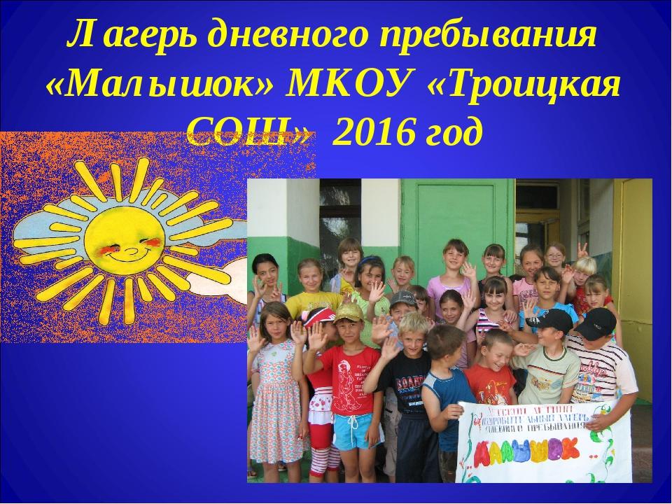 Лагерь дневного пребывания «Малышок» МКОУ «Троицкая СОШ» 2016 год