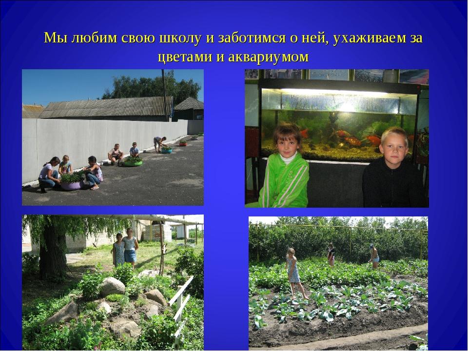 Мы любим свою школу и заботимся о ней, ухаживаем за цветами и аквариумом