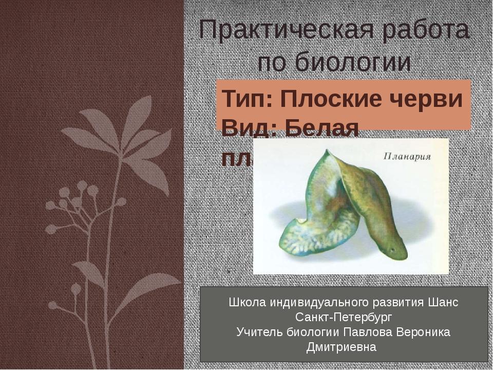Тип: Плоские черви Вид: Белая планария Практическая работа по биологии Школа...
