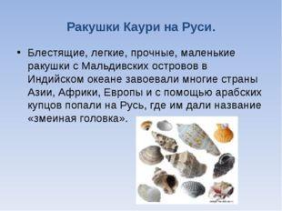 Ракушки Каури на Руси. Блестящие, легкие, прочные, маленькие ракушки с Мальди