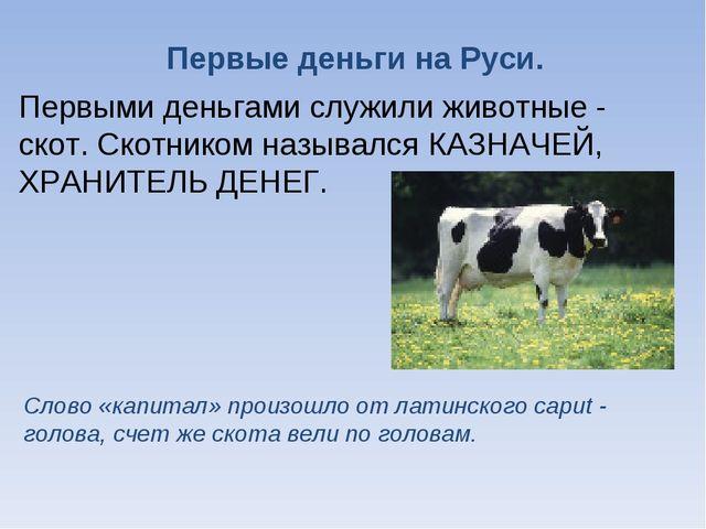 Первые деньги на Руси. Первыми деньгами служили животные - скот. Скотником на...