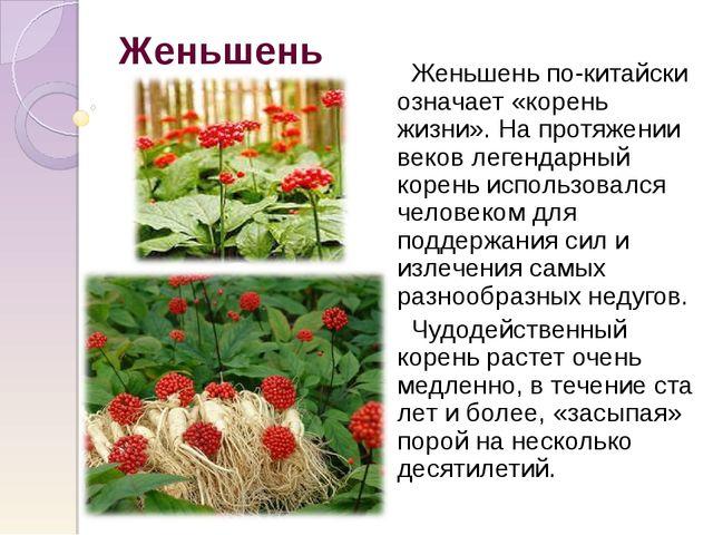 Женьшень Женьшень по-китайски означает «корень жизни». На протяжении веков ле...