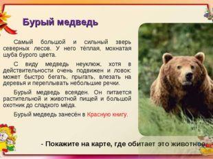 Бурый медведь Самый большой и сильный зверь северных лесов. У него тёплая, мо