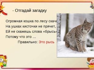 - Отгадай загадку Огромная кошка по лесу скачет, На ушках кисточки не прячет,
