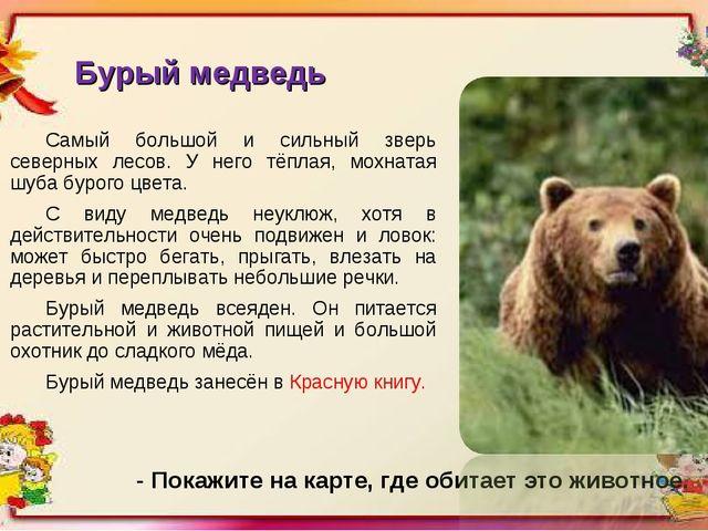 Бурый медведь Самый большой и сильный зверь северных лесов. У него тёплая, мо...
