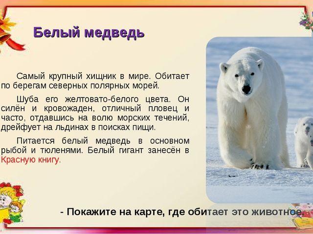 Белый медведь Самый крупный хищник в мире. Обитает по берегам северных полярн...