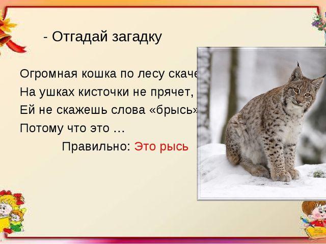 - Отгадай загадку Огромная кошка по лесу скачет, На ушках кисточки не прячет,...