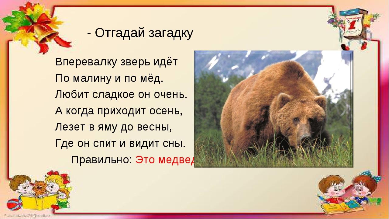 - Отгадай загадку Вперевалку зверь идёт По малину и по мёд. Любит сладкое он...