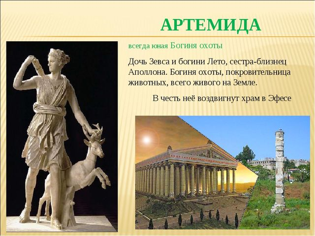 АРТЕМИДА всегда юная Богиня охоты Дочь Зевса и богини Лето, сестра-близнец Ап...
